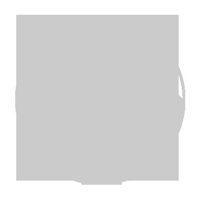 Fiat Car Logo Logo